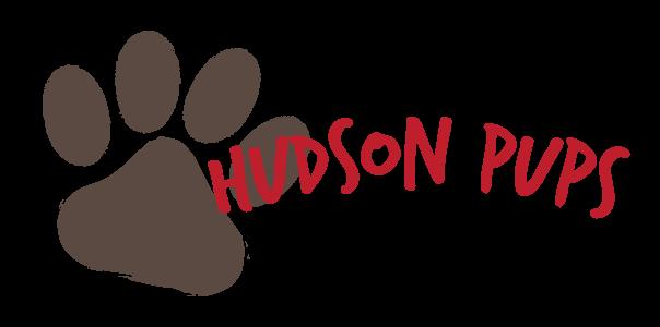 Hudson Pups